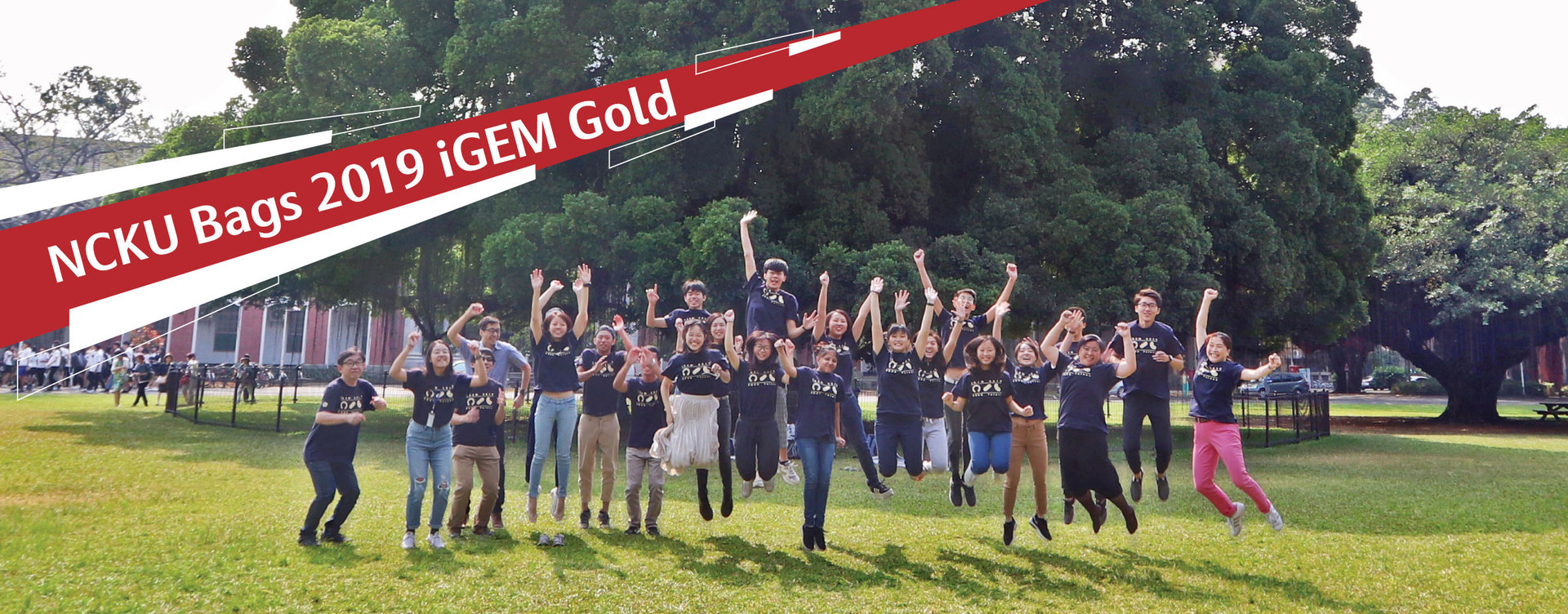 NCKU Tainan's chronic kidney disease solution bags iGEM gold