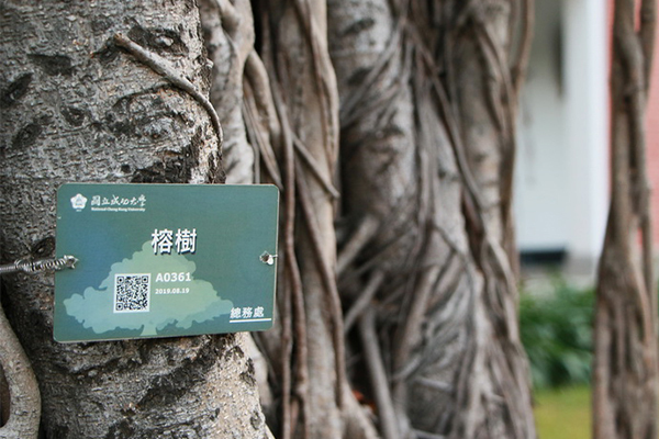 NCKU Trees Now Come in QR Codes(Open new window)
