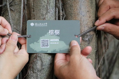 NCKU Trees Now Come in QR Codes